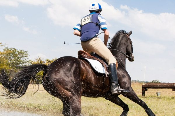 How to become a pro horseback rider?